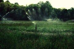 Sproeiers die gebied water geven Stock Foto