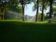 Sproeiers op golfcursus Royalty-vrije Stock Foto