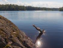 Sprong in het water Royalty-vrije Stock Foto