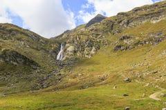 Spronser dal i södra Tyrol, Italien Arkivbild