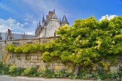 Sprookjeamboise kasteel De boommuur van Frankrijk Stock Foto