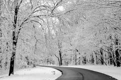 Sproszkowany śnieg obraz royalty free