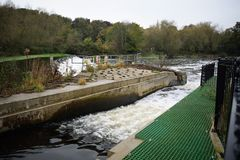 Sprotbrough och Warmsworth flodDon Weir Salmon Run Fish passerande Royaltyfri Bild