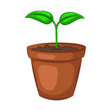 Sprout in ceramic pot. Plant isolated on white background. Cartoon icon. Vector illustration stock illustration