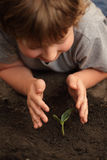 Sprout in children hand Royalty Free Stock Image