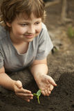 Sprout in children hand Royalty Free Stock Photo
