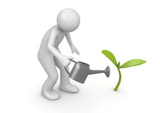 Sprout crescente Imagem de Stock