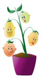 Sprout with faces Royalty Free Stock Photos