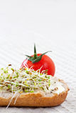 Sprout germ breakfast Stock Photography