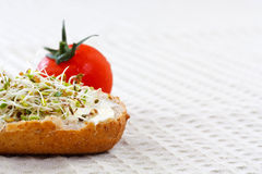 Sprout germ breakfast Stock Images