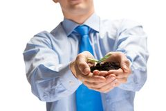 Sprout in hands Royalty Free Stock Images
