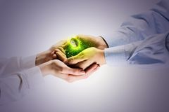 Sprout in hands. Young green sprout in human hands. Ecology concept Stock Photos