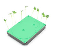 Sprout and hard disk drive Stock Photos