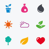 Sprout, leaf icons. Garden and weather signs. Royalty Free Stock Photos