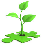 Sprout on puzzle. 3d illustration of a small plant growing from a jigsaw puzzle - isolated on white - growth concept Royalty Free Stock Images