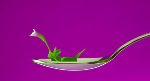 Sprout in the spoon Royalty Free Stock Images