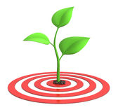 Sprout on target Royalty Free Stock Images