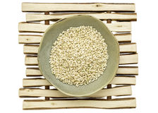 Sprouted brown rice Stock Photography