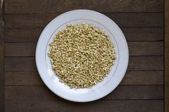 Sprouted buckwheat on white plate. On brown wooden table. Top view. Center position. Organic raw hulled groats. Horizontal background with copy space. Concept royalty free stock photography
