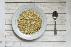 Sprouted buckwheat in white plate and spood on white table. Sprouted buckwheat in white plate and spoon on white wooden table. Top view. Center position. Concept stock images