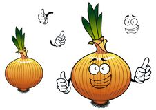 Sprouted cartoon golden onion vegetable character Stock Images