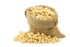 Sprouted chick peas in a burlap bag Stock Photos