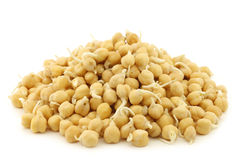 Sprouted chick peas Royalty Free Stock Photography