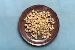 Sprouted chickpeas. Vegetarianism. Healthy diet stock photography