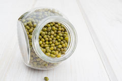 Sprouted mung beans in a glass jar royalty free stock images