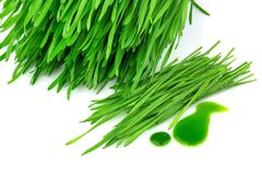 Sprouted wheat and wheatgrass juice Royalty Free Stock Photos