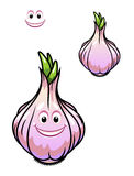 Sprouting fresh garlic bulb Royalty Free Stock Photos