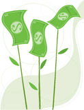 Sprouting Money Stock Image