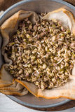 Sprouting mung beans in a metal bowl closeup Royalty Free Stock Photography