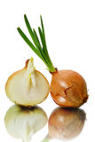 Sprouting onions Royalty Free Stock Image
