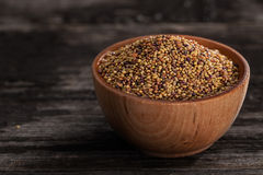Sprouting Seeds in a Wooden bowl. Close-up of Red Clover Sprouting Seeds in a Wooden bowl Stock Photography