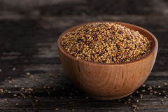 Sprouting Seeds in a Wooden bowl. Close-up of Red Clover Sprouting Seeds in a Wooden bowl Royalty Free Stock Images
