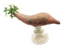 Sprouting yam on a pedestal Stock Photo