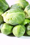 Sprouts Imagens de Stock Royalty Free