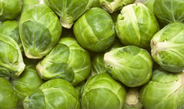 Sprouts background Stock Photo