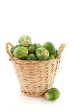 Sprouts in a basket Stock Photography