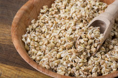 Sprouts of buckwheat groats in bowl, rustic style Stock Image