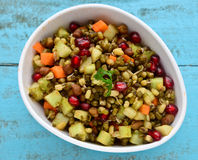 Sprouts chaat Royalty Free Stock Photography