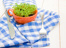 Sprouts of cress in an orange cup, fork and knife Royalty Free Stock Images