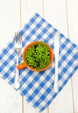 Sprouts of cress in an orange cup, fork and knife Stock Image