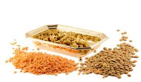 Sprouts da lentilha Foto de Stock Royalty Free