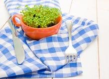 Sprouts do agrião em um copo, em uma forquilha e em uma faca alaranjados Imagens de Stock Royalty Free