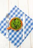 Sprouts do agrião em um copo, em uma forquilha e em uma faca alaranjados Imagem de Stock