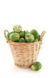 Sprouts em uma cesta Fotografia de Stock