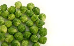 Sprouts no fundo branco Fotografia de Stock Royalty Free