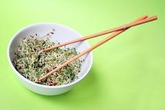 Sprouts no verde Imagens de Stock